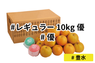 レギュラー優10kg【豊水】