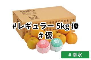 レギュラー優5kg【幸水】