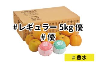 レギュラー優5kg【豊水】