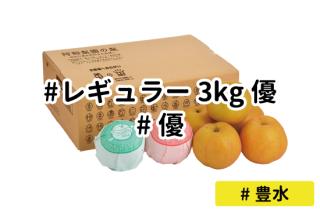 レギュラー優3kg【豊水】