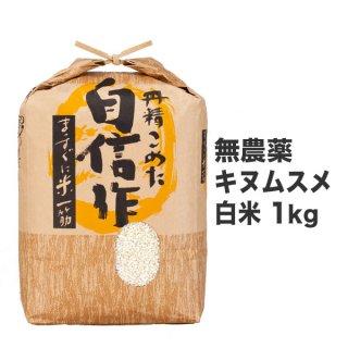 無農薬キヌムスメ 白米 1kg