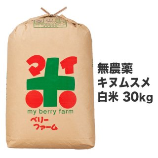 無農薬キヌムスメ 白米 30kg