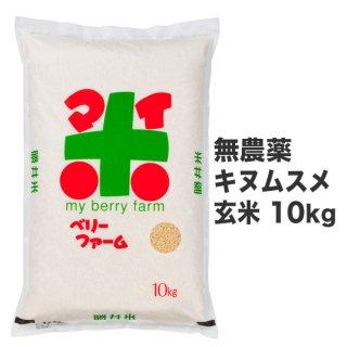 無農薬キヌムスメ 玄米 10kg