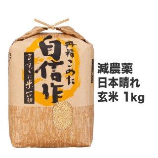 減農薬日本晴れ 玄米 1kg