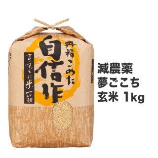 減農薬夢ごこち 玄米 1kg