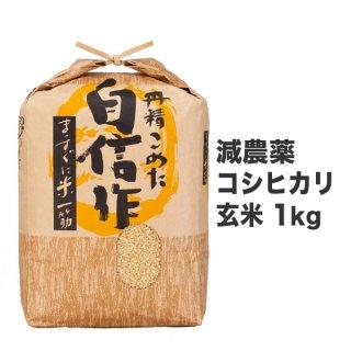減農薬コシヒカリ 玄米 1kg