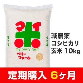 【定期購入6ヶ月分】減農薬コシヒカリ 玄米 10kg