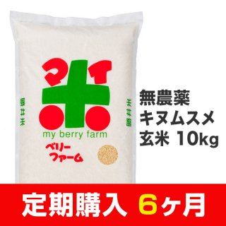 【定期購入6ヶ月分】無農薬キヌムスメ 玄米 10kg