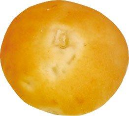 【宅配専用】オニオンパン