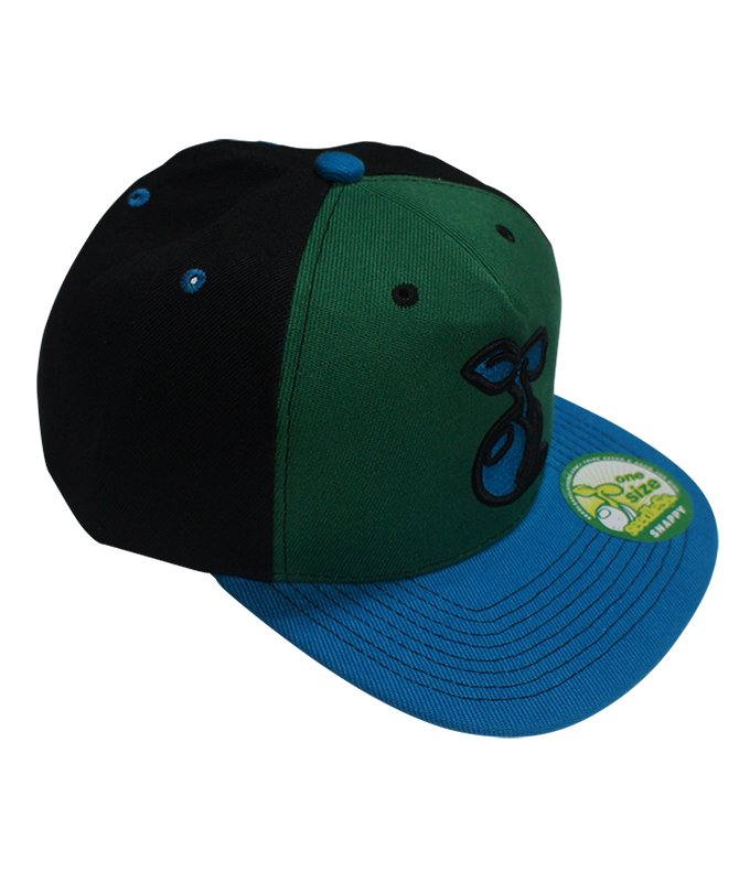 2 tone sprout snap back cap
