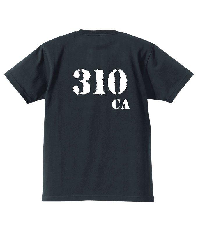 CA310