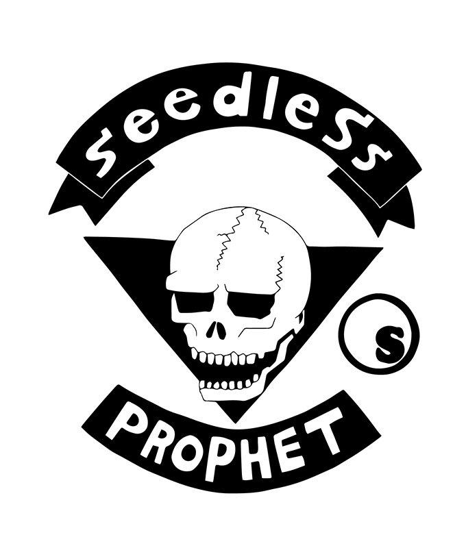 sd prophet hoody