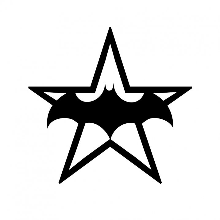 rg felty batt star hoody