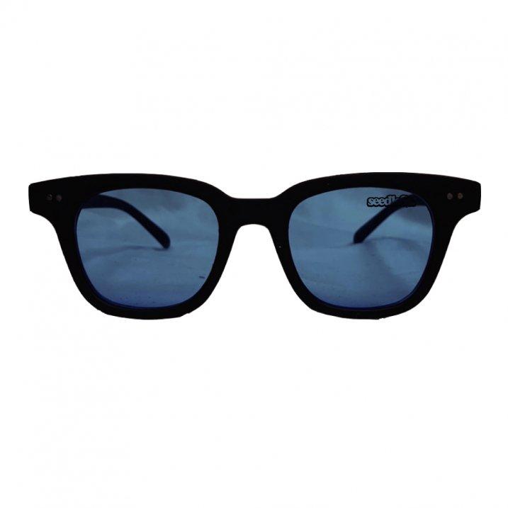 sd sunglasses sd2の商品イメージ