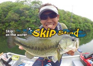 SKIP SHAD4.8  スキップシャッド4.8