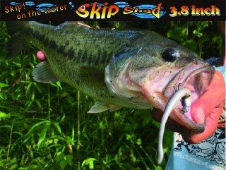 SKIP SHAD 3.8 スキップシャッド3.8