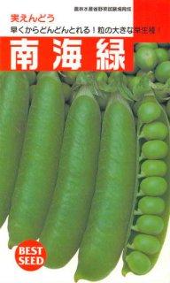 実エンドウの種【南海緑(農林水産省野菜試育成)】〔固定種〕