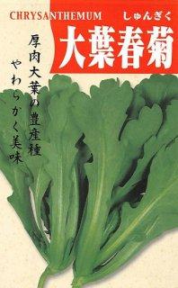 シュンギクの種【大葉春菊】〔固定種〕 ※無消毒