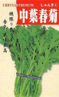 シュンギクの種【中葉春菊】〔固定種〕 ※無消毒