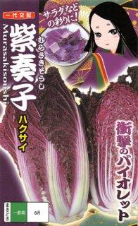 紫ハクサイの種【紫奏子】〔F1〕