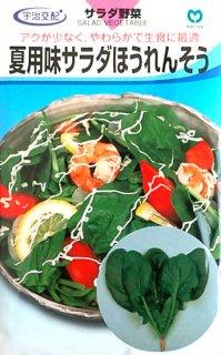 ホウレンソウの種【味サラダほうれんそう(夏用)】〔F1〕