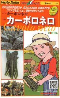 黒キャベツの種【カーボロネロ】〔固定種〕 ※無消毒
