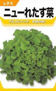 リーフレタスの種【ニューれたす菜】〔固定種〕 ※無消毒