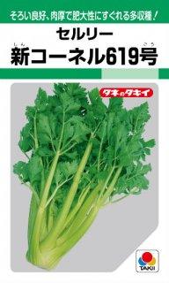 セロリの種【新コーネル619号】〔固定種〕 ※無消毒