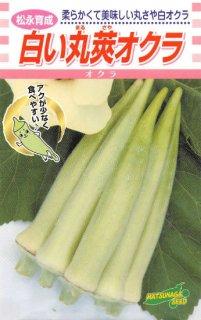 白オクラの種【白い丸莢オクラ】〔固定種〕 ※無消毒
