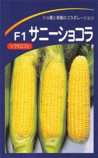 トウモロコシの種【サニーショコラ】〔F1〕