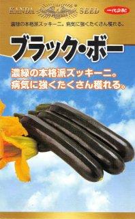 ズッキーニの種【ブラック・ボー】〔F1〕