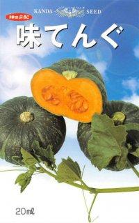 中玉カボチャの種【味てんぐ】〔F1〕 ※無消毒