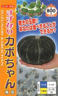 ミニ〜中玉カボチャの種【すずなりカボちゃん】〔F1〕 ※無消毒(乾熱処理)