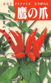 トウガラシの種【鷹の爪】〔固定種〕 ※無消毒