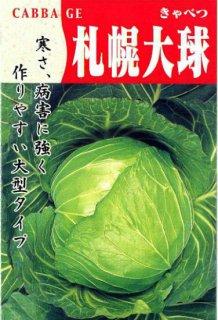 キャベツの種【札幌大玉4号】〔固定種〕