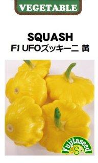 UFOズッキーニの種【サンバースト】〔F1〕 ※無消毒