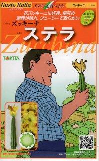 ズッキーニの種【ステラ】〔固定種〕 ※無消毒