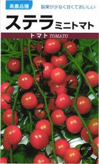 ミニトマトの種【ステラ】〔固定種〕 ※無消毒