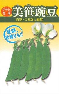 サヤエンドウの種【美笹】〔固定種〕
