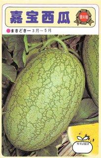 小玉スイカの種【嘉宝西瓜】〔固定種〕 ※無消毒(乾熱処理)