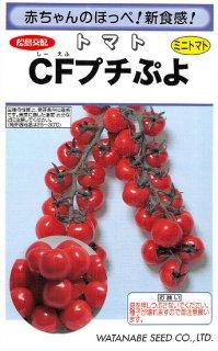 ミニトマトの種【CFプチぷよ】〔F1〕 ※無消毒
