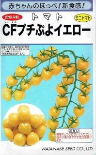 ミニトマトの種【CFプチぷよイエロー】〔F1〕 ※無消毒