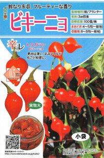トウガラシの種【ビキーニョ】〔固定種〕 ※無消毒