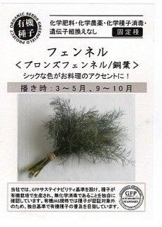 ブロンズフェンネルの種〔有機種子・固定種〕 ※無消毒