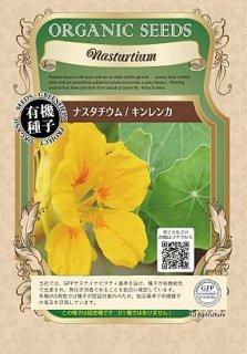 ナスタチウム(キンレンカ)の種〔有機種子・固定種〕 ※無消毒