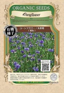 コーンフラワー(矢車菊)の種〔有機種子・固定種〕 ※無消毒