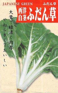 フダンソウの種(白茎)〔固定種〕 ※無消毒