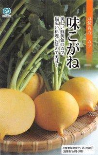 黄カブ(黄金カブ)の種【味こがね】〔固定種〕 ※無消毒