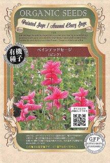 ペインテッドセージ(ピンク)の種〔有機種子・固定種〕 ※無消毒