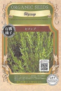 ヒソップの種〔有機種子・固定種〕 ※無消毒